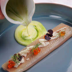 Trout fillet with buttermilk and dill